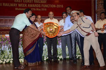 WALTAIR DIVISION BAGGED OVERALL EGFFECIENCY SHIELD